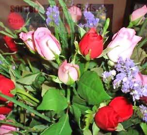 Floranet