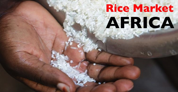 Rice Importers in Africa Face New Challenges - Africa Business Pages